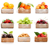 Set of fresh fruits Stock Photography
