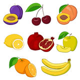 Set of fresh fruits Royalty Free Stock Photos