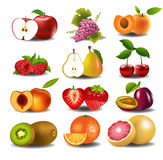 Set of fresh fruits. Vector set of fresh fruits isolated on a white background Stock Photography