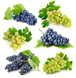 Set fresh grape fruits with green leaves Royalty Free Stock Images