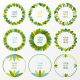 Set of fresh green leaves vector frame. Nature border background Royalty Free Stock Image
