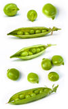 Set of fresh green pea Royalty Free Stock Photography