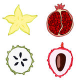 Set of fresh hand drawn fruits and vegetables and products. Royalty Free Stock Photo