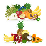 Set of fresh healthy fruit. Healthy lifestyle  design elements Stock Image
