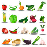 Set with fresh healty vegetables. Very high quality original trendy vector set with fresh healty vegetables. Summer agriculture design. paprika, celery, broccoli Stock Images