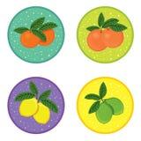 Set of fresh juicy fruit icons Stock Image
