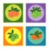 Set of fresh juicy fruit icons Royalty Free Stock Photos