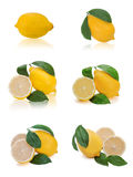 Set of fresh lemon citrus with cut and green leaves isolated on Stock Photography