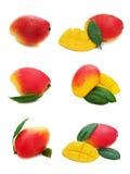 Set of fresh mango fruits isolated on white background. Royalty Free Stock Photos