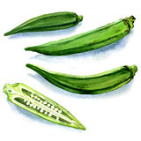 Set of fresh okra isolated on a white background