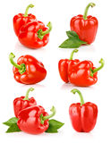 Set fresh pepper fruits isolated Stock Image
