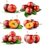 Set fresh plum fruits with cut and green leaves Stock Photo