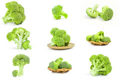 Set of fresh raw broccoli isolated on a white background with clipping path. Group of broccoli floret on white Royalty Free Stock Photo