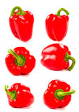 Set of fresh red peppers Royalty Free Stock Photography