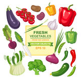 Set of fresh, ripe, delicious vegetables for your design. Colorful collection of isolated vegetarian food from the garden Royalty Free Stock Images