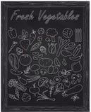 Set of fresh ripe vegetables. Drawn in chalk stock illustration