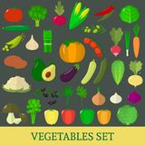 A set of fresh vegetable illustrations on a dark background. A set of vegetables. Organic vegetarian healthy food isolated on a dark background. Vector Royalty Free Illustration