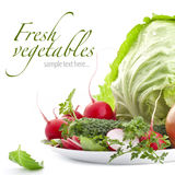 Set of fresh vegetables Royalty Free Stock Photography