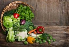 Set fresh vegetables Stock Image