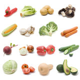 Set of fresh vegetables. Isolated on a white background Royalty Free Stock Images