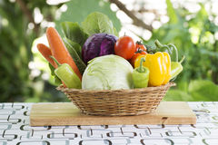 Set fresh vegetables stock photo
