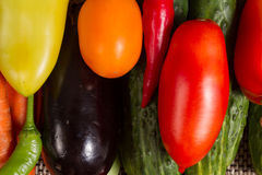 Set of fresh vegetables. Cucumbers, tomatoes , carrots, hot peppers , sweet peppers and eggplant Royalty Free Stock Photography