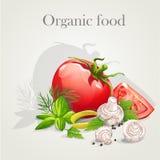 A set of fresh vegetables-EPS10. A set of fresh vegetables royalty free illustration
