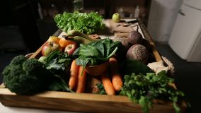 Set of fresh vegetables and fruits on wooden tray. Set of different green fresh raw vegetables and fruits in the wooden tray for cooking healthy food closeup stock video footage