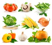 Set fresh vegetables with green leave Stock Photography