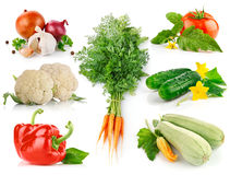 Set fresh vegetables with green leaves stock images