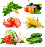 Set fresh vegetables with green leaves Royalty Free Stock Photos