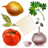 Set of fresh vegetables Stock Photos