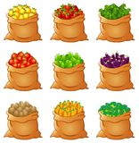 Set of fresh vegetables In Sack Stock Photos