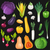 Set of fresh vegetables Stock Photography