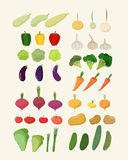 Set of fresh vegetables. Vector illustration Isolated carrot and Royalty Free Stock Photography