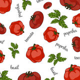 Set of fresh vegetables. Vector Royalty Free Stock Photography
