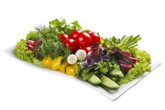 Set of fresh vegetables on a white plate royalty free stock photos