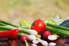 Set of fresh vegetables on wooden table. Red tomato and radish and green onion, pepper and cucumber,n Royalty Free Stock Photography