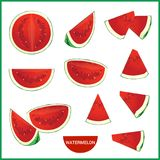 Set of fresh watermelon in various slice styles vector format. In cartoon styles Royalty Free Stock Image