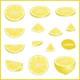 Set of fresh yellow lemon in various slice styles vector format Stock Photo