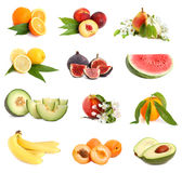 Set of freshness fruits Stock Photos