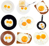 Set from fried eggs isolated on white Stock Photos