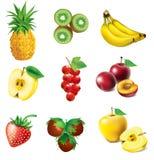 Set of fruit. Set of  fruit - pineapple, kiwi, apple, strawberry, red currant, banana, plum and hazelnut Royalty Free Stock Photos