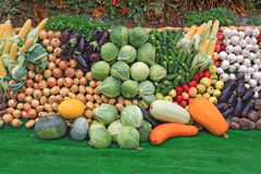 Set fruit Royalty Free Stock Image
