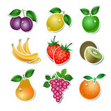 Set of  fruit Stock Image