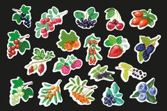 Set of Fruit Berry Stickers, Pins or fashion Patches Strawberry with and Gooseberry Blackcurrant Raspberries Blueberries Royalty Free Stock Photos