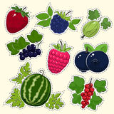 Set of Fruit Berry Stickers Stock Images