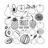 Set of fruit in doodle style. Vector illustration Royalty Free Stock Photography