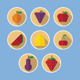 Set of fruit flat icons with long shadows Stock Photography