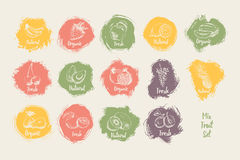 Set of fruit hand drawn with label of organic watercolour shape background. Royalty Free Stock Photography
